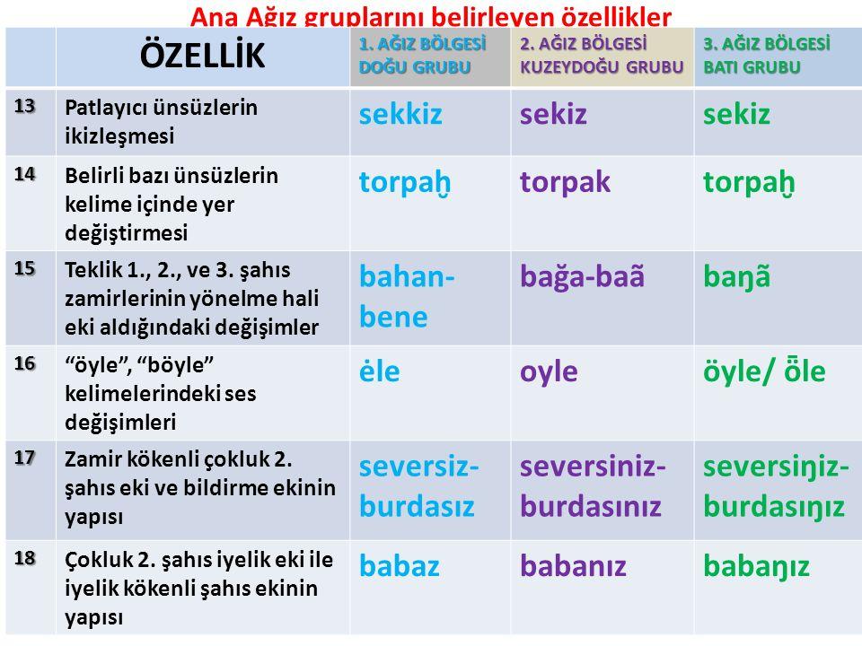 Ana Ağız gruplarını belirleyen özellikler ÖZELLİK 1.