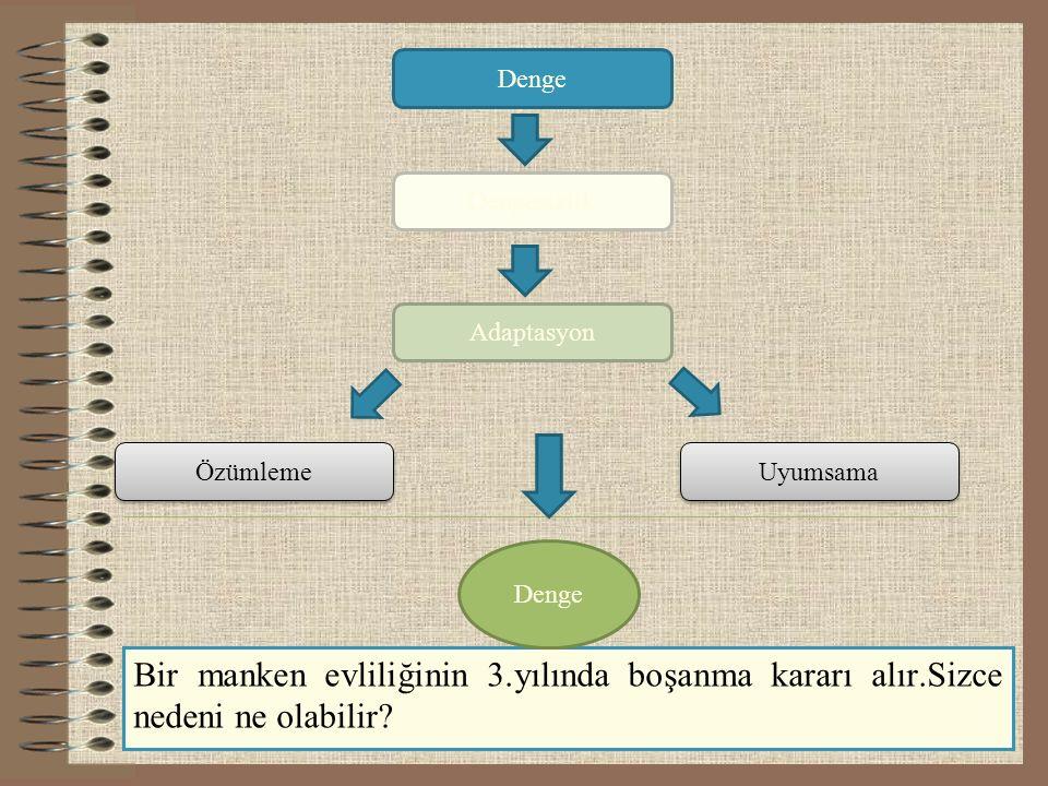 2) BİLİŞSEL GELİŞİMİ ETKİLEYEN FAKTÖRLER a)Olgunlaşma * Olgunlaşma, insan organizmasında, biyolojik sistemin kendi içinden gelen etkileri nedeni ile meydana gelen değişmelerdir.