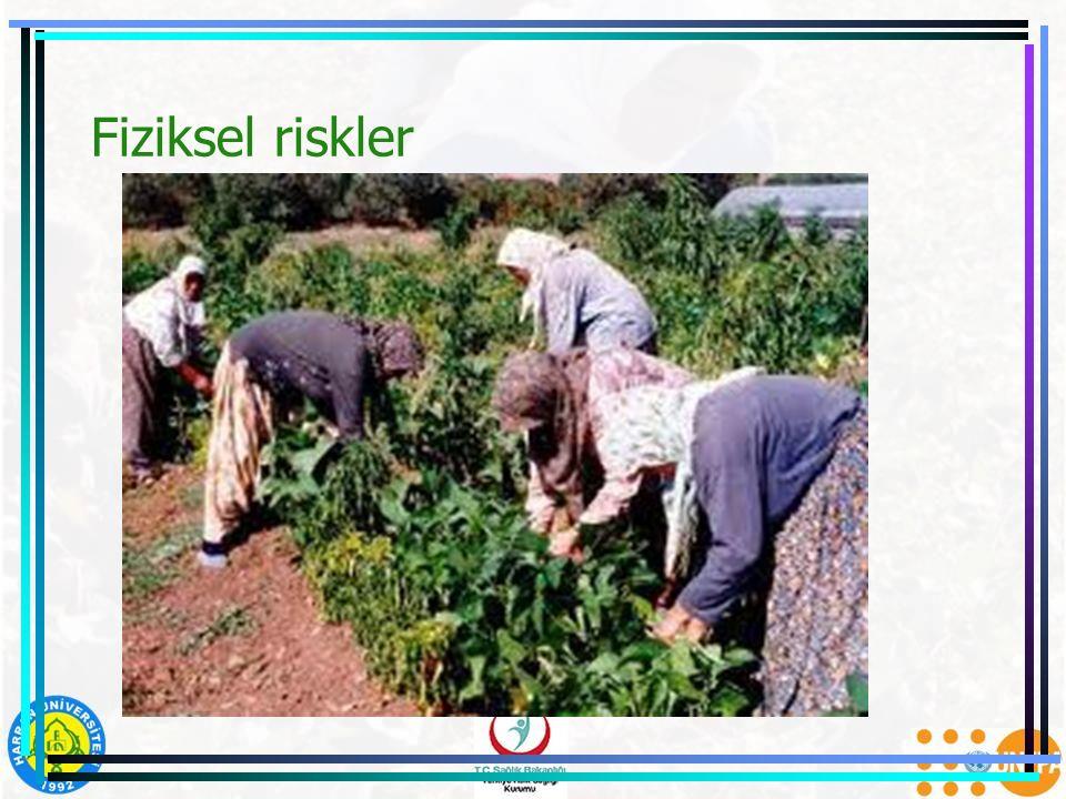 Fiziksel riskler