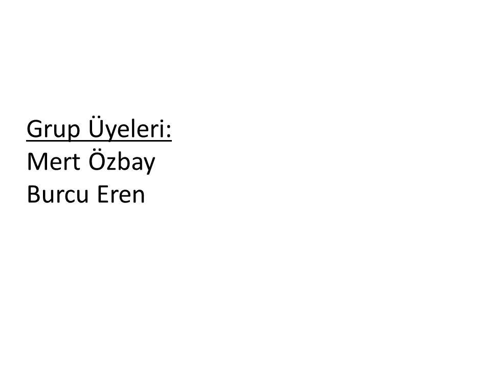 Grup Üyeleri: Mert Özbay Burcu Eren