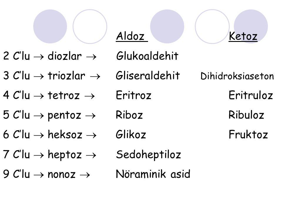 Aldoz Ketoz 2 C'lu  diozlar  Glukoaldehit 3 C'lu  triozlar  Gliseraldehit Dihidroksiaseton 4 C'lu  tetroz  EritrozEritruloz 5 C'lu  pentoz  Ri