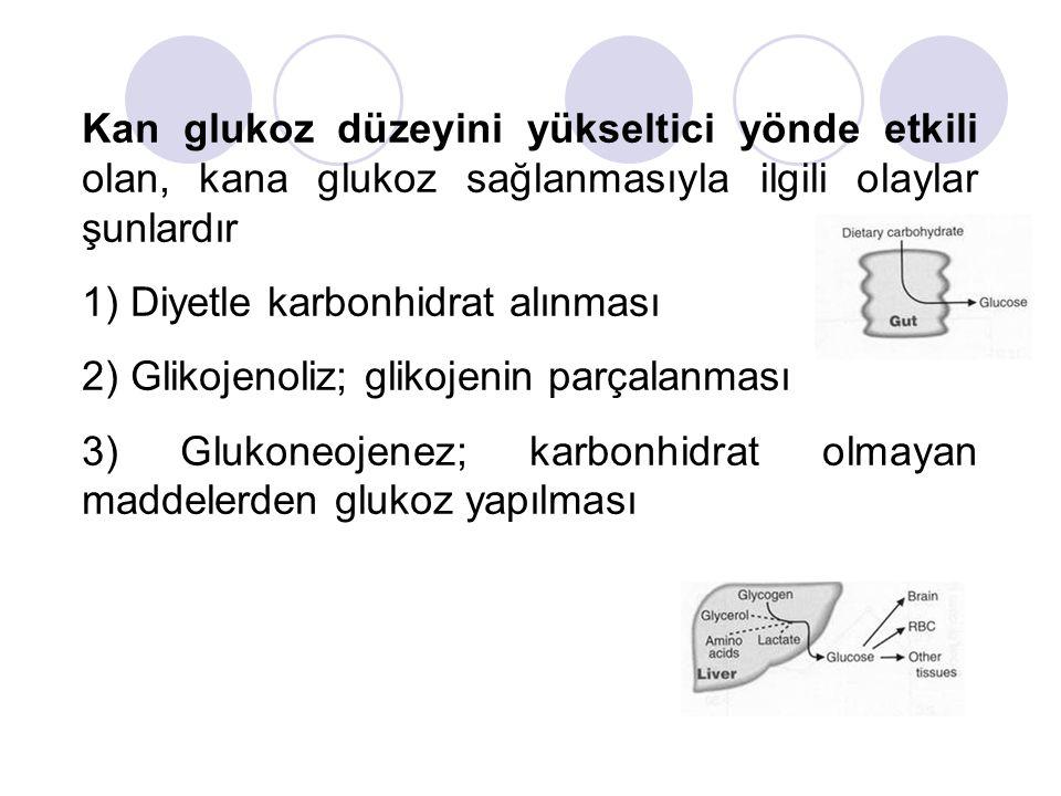 Kan glukoz düzeyini yükseltici yönde etkili olan, kana glukoz sağlanmasıyla ilgili olaylar şunlardır 1) Diyetle karbonhidrat alınması 2) Glikojenoliz;