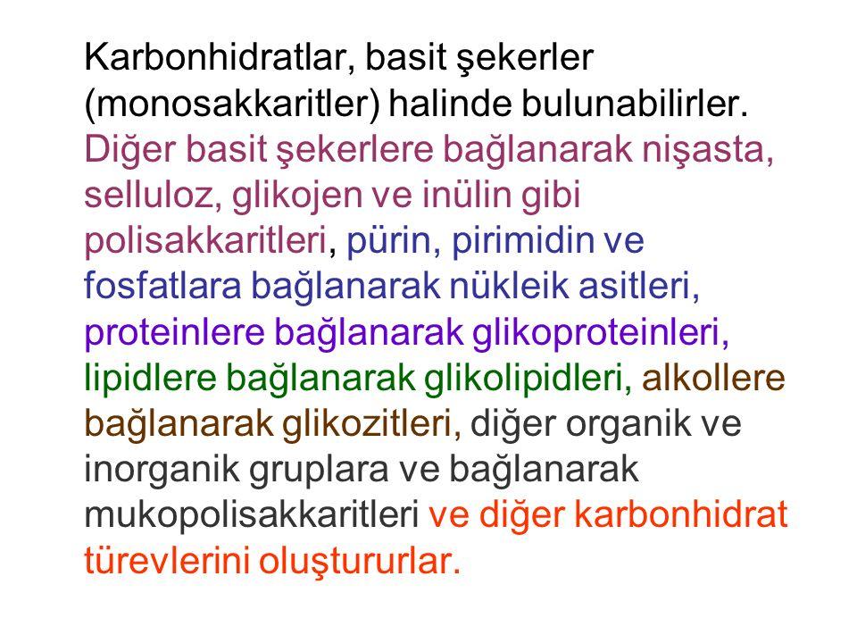 Karbonhidrat metabolizması bozuklukları ile ilgili tarama testleri 1.
