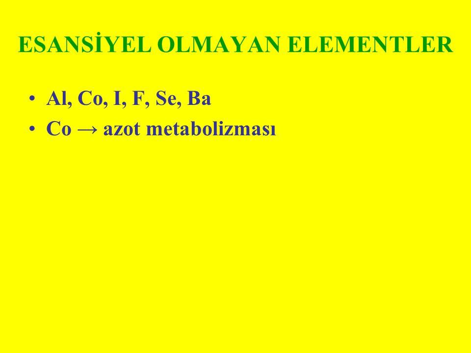 ESANSİYEL OLMAYAN ELEMENTLER Al, Co, I, F, Se, Ba Co → azot metabolizması