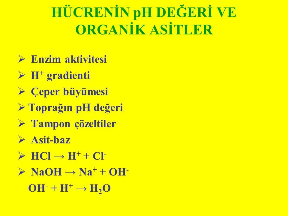 HÜCRENİN pH DEĞERİ VE ORGANİK ASİTLER  Enzim aktivitesi  H + gradienti  Çeper büyümesi  Toprağın pH değeri  Tampon çözeltiler  Asit-baz  HCl →
