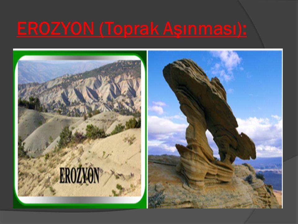 EROZYON (Toprak Aşınması):