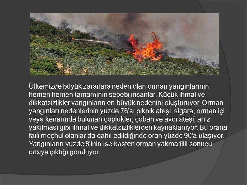 Ülkemizde büyük zararlara neden olan orman yangınlarının hemen hemen tamamının sebebi insanlar.