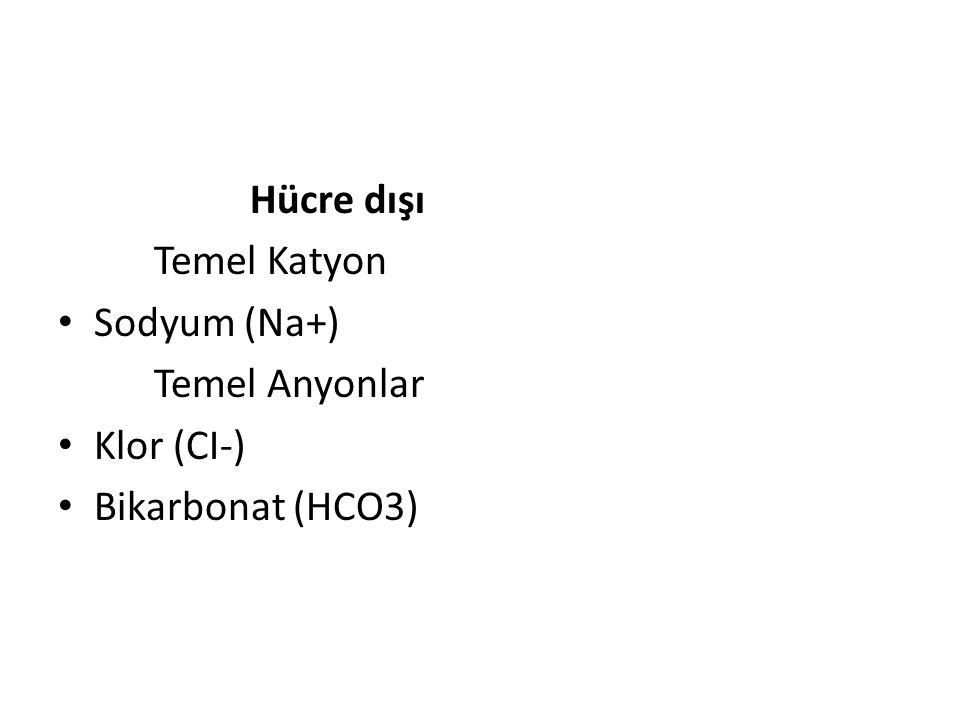 Hücre içinde potasyum konsantrasyonu yüksek, sodyum konsantrasyonu düşüktür.