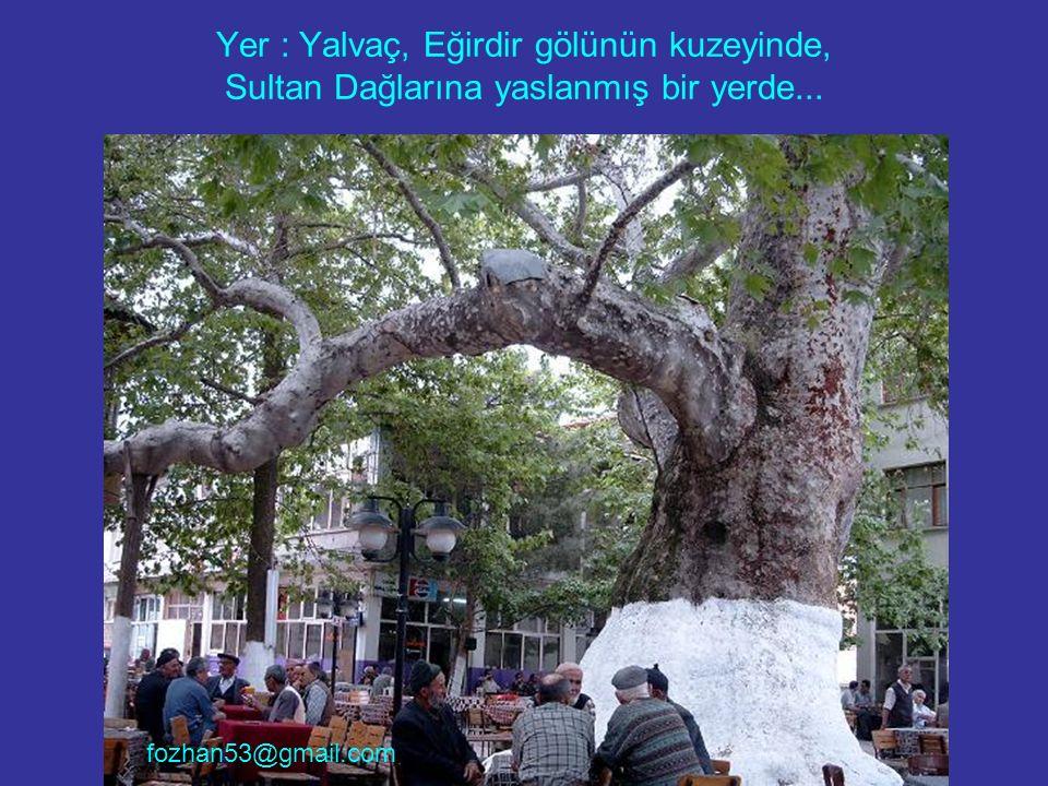 Yer : Yalvaç, Eğirdir gölünün kuzeyinde, Sultan Dağlarına yaslanmış bir yerde... fozhan53@gmail.com
