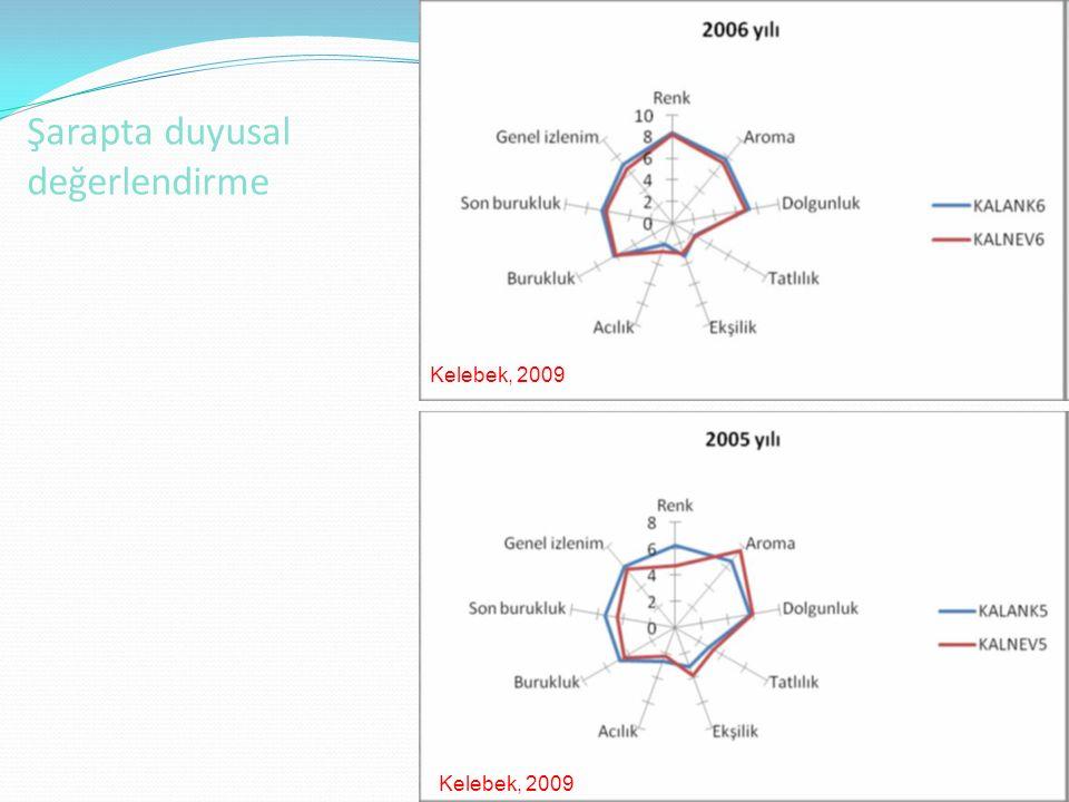 Şarapta duyusal değerlendirme 45 Kelebek, 2009