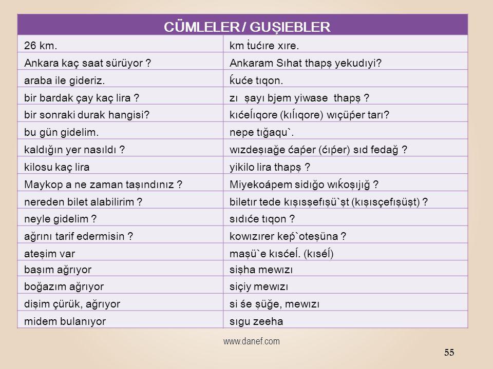 www.danef.com CÜMLELER / GUŞIEBLER annem nerede. séáne tıde şıı` .