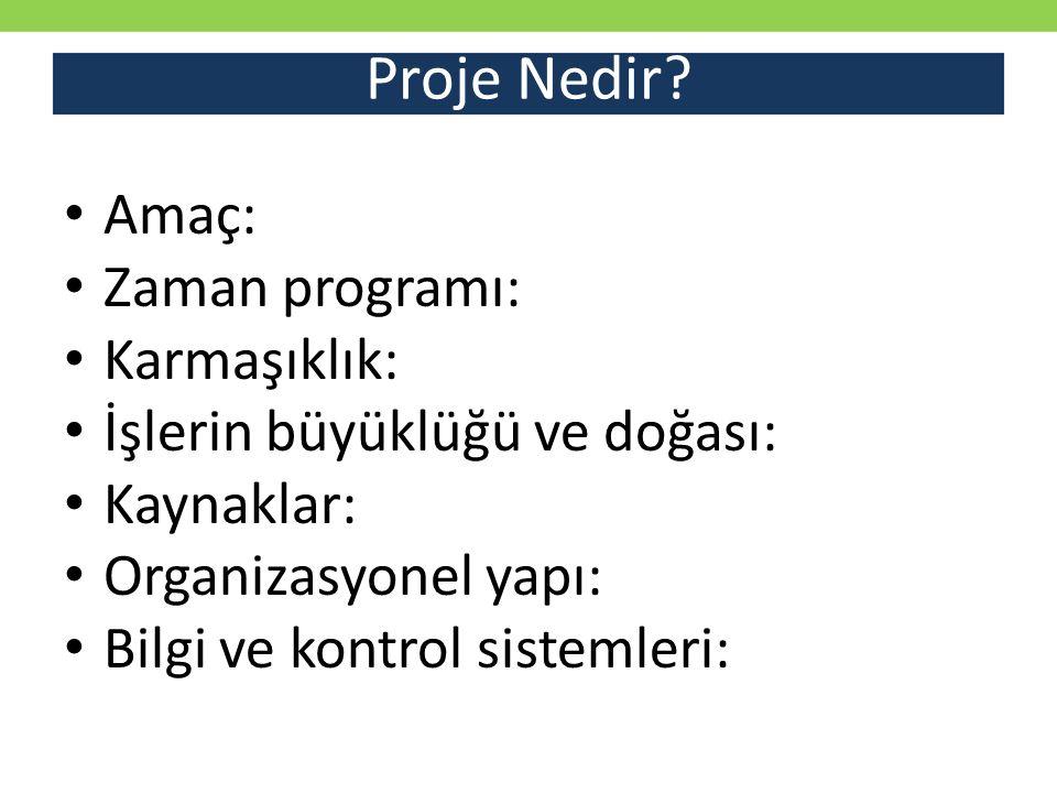 Proje Yönetimi Nedir.
