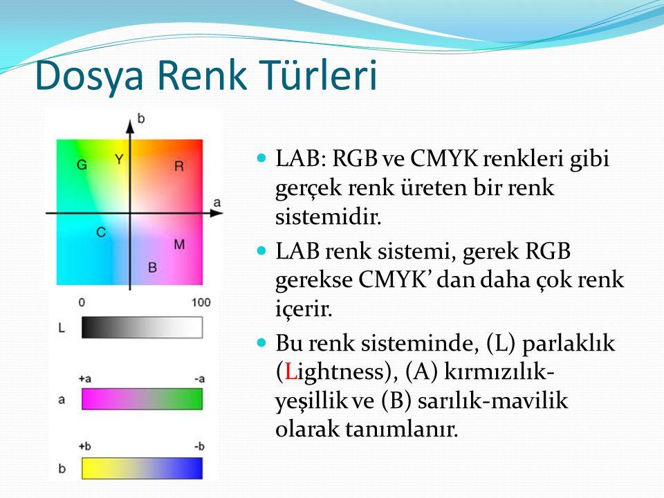 LAB: RGB ve CMYK renkleri gibi gerçek renk üreten bir renk sistemidir.