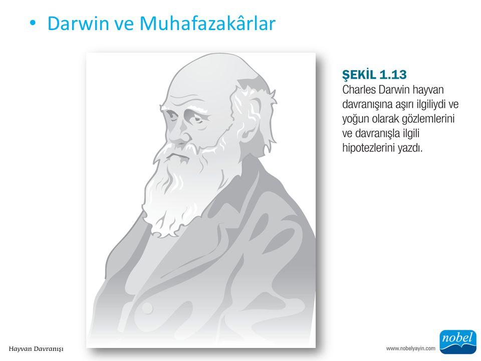 Darwin ve Muhafazakârlar