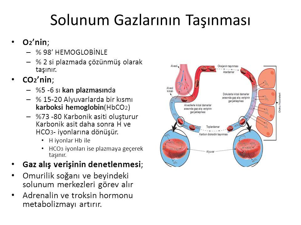 Solunum Gazlarının Taşınması O 2 'nin; – % 98' HEMOGLOBİNLE – % 2 si plazmada çözünmüş olarak taşınır. CO 2 'nin; – %5 -6 sı kan plazmasında – % 15-20