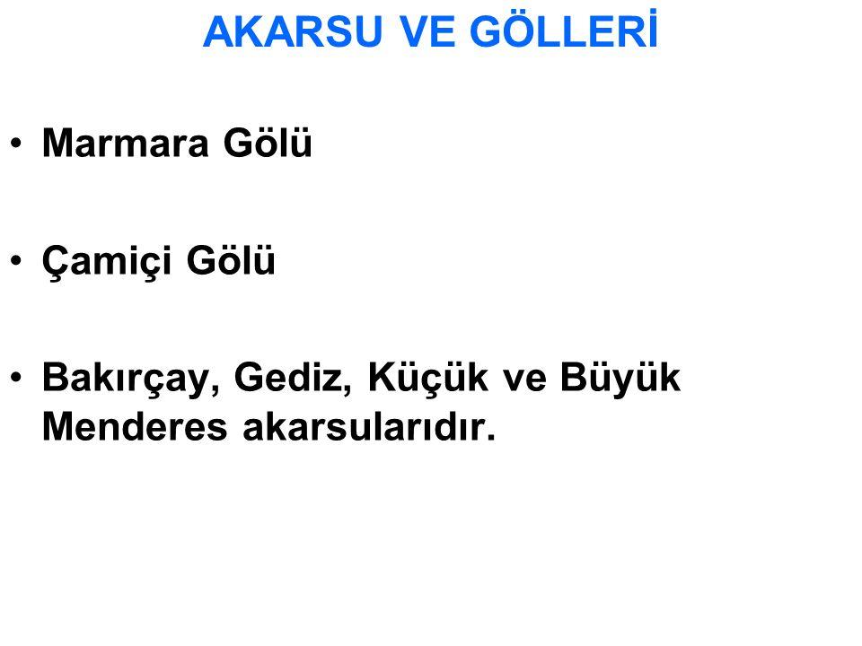 Marmara Gölü Çamiçi Gölü Bakırçay, Gediz, Küçük ve Büyük Menderes akarsularıdır. AKARSU VE GÖLLERİ