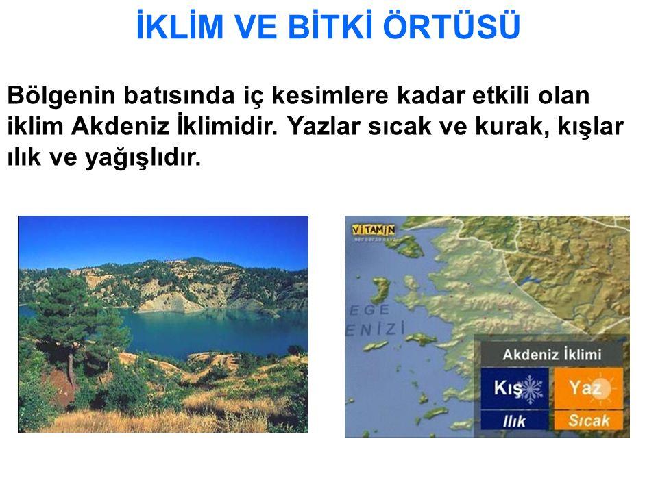 İKLİM VE BİTKİ ÖRTÜSÜ Bölgenin batısında iç kesimlere kadar etkili olan iklim Akdeniz İklimidir. Yazlar sıcak ve kurak, kışlar ılık ve yağışlıdır.