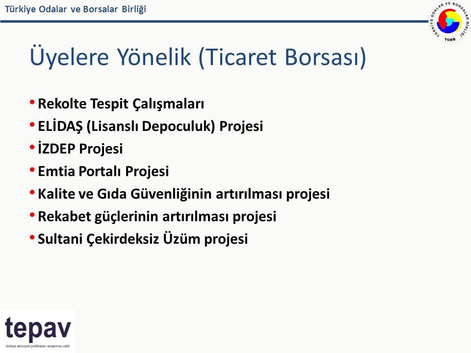 Türkiye Odalar ve Borsalar Birliği Üyelere Yönelik (Ticaret Borsası) Rekolte Tespit Çalışmaları ELİDAŞ (Lisanslı Depoculuk) Projesi İZDEP Projesi Emtia Portalı Projesi Kalite ve Gıda Güvenliğinin artırılması projesi Rekabet güçlerinin artırılması projesi Sultani Çekirdeksiz Üzüm projesi