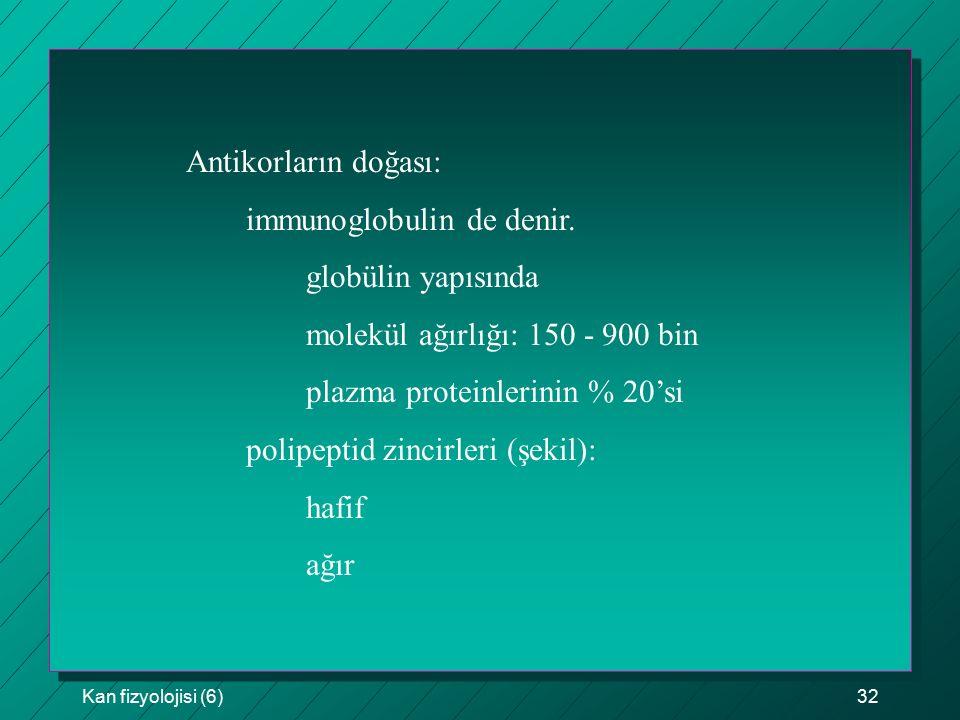 Kan fizyolojisi (6)32 Antikorların doğası: immunoglobulin de denir. globülin yapısında molekül ağırlığı: 150 - 900 bin plazma proteinlerinin % 20'si p