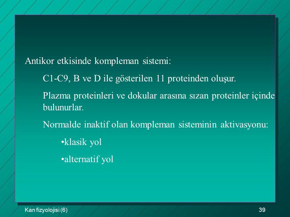 Kan fizyolojisi (6)39 Antikor etkisinde kompleman sistemi: C1-C9, B ve D ile gösterilen 11 proteinden oluşur. Plazma proteinleri ve dokular arasına sı