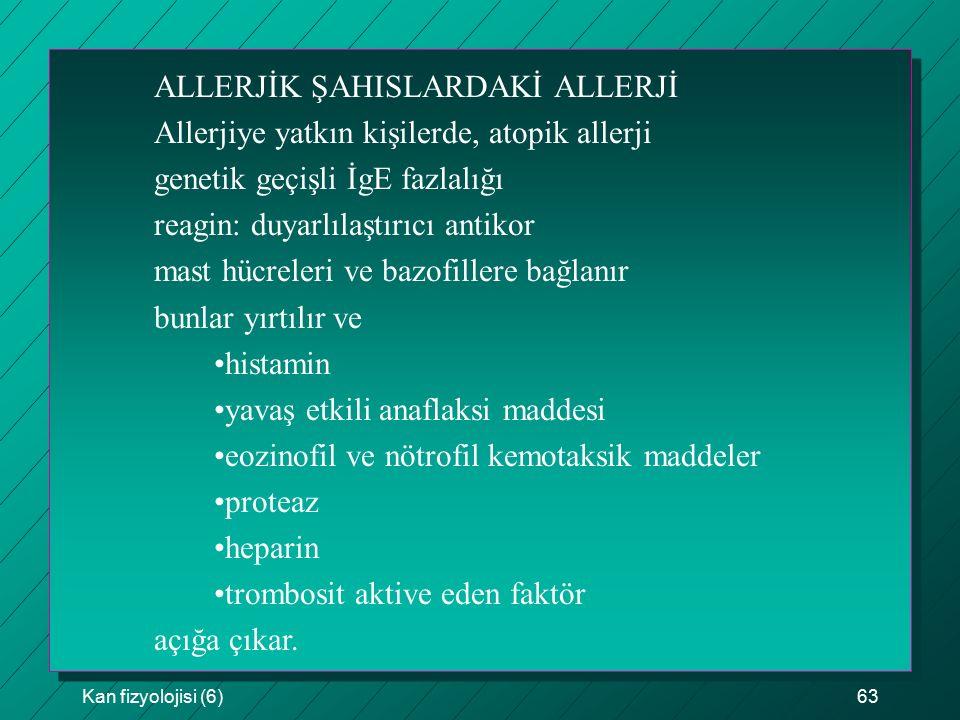 Kan fizyolojisi (6)63 ALLERJİK ŞAHISLARDAKİ ALLERJİ Allerjiye yatkın kişilerde, atopik allerji genetik geçişli İgE fazlalığı reagin: duyarlılaştırıcı