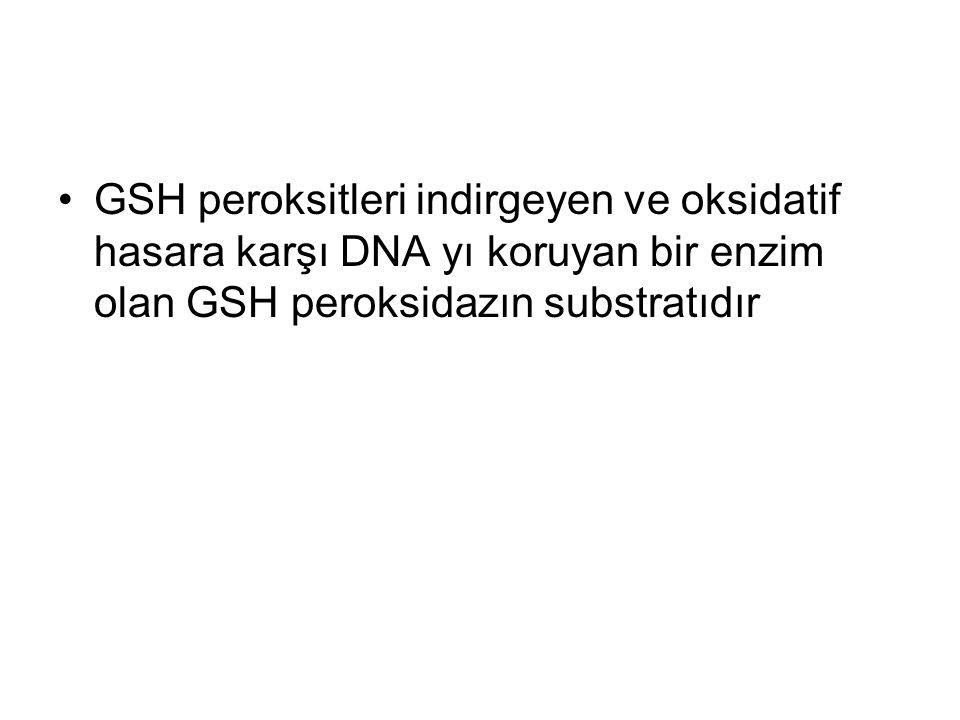 GSH peroksitleri indirgeyen ve oksidatif hasara karşı DNA yı koruyan bir enzim olan GSH peroksidazın substratıdır