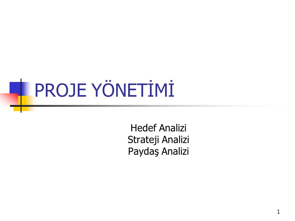 1 PROJE YÖNETİMİ Hedef Analizi Strateji Analizi Paydaş Analizi