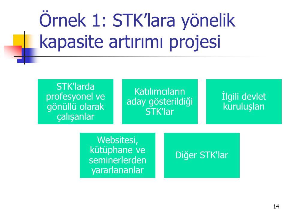 Örnek 1: STK'lara yönelik kapasite artırımı projesi 14 STK'larda profesyonel ve gönüllü olarak çalışanlar Katılımcıların aday gösterildiği STK'lar İlg