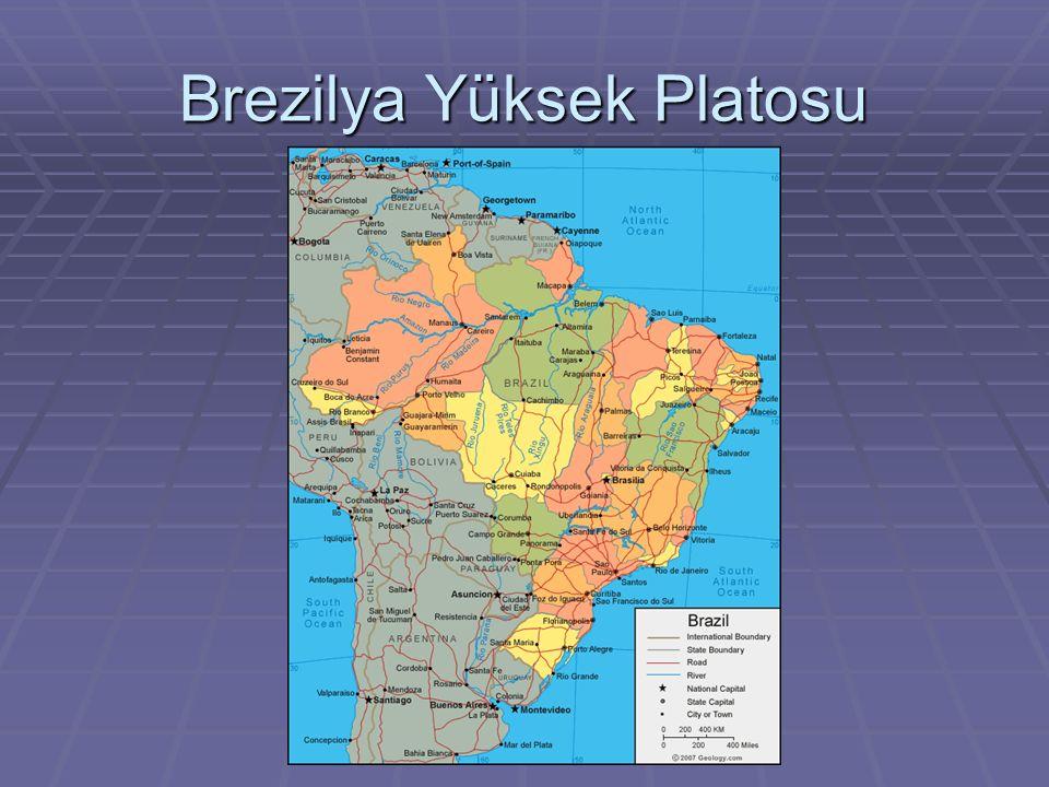 Güney Amerika kıtasında bulunan bu ülke platosu, büyük bir alanı kapsar ve tek düze bir masiften meydan gelmiştir.Oluşumunda granit,gnays ve diyabaz bulunmaktadır.