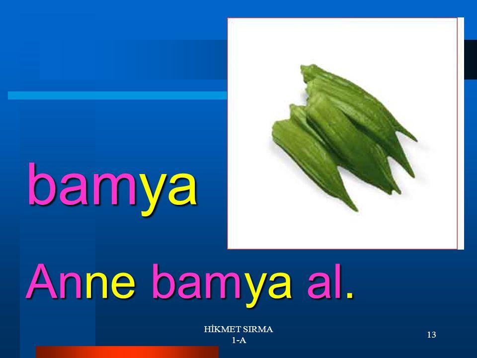 HİKMET SIRMA 1-A 12 balık Ali balık tut.