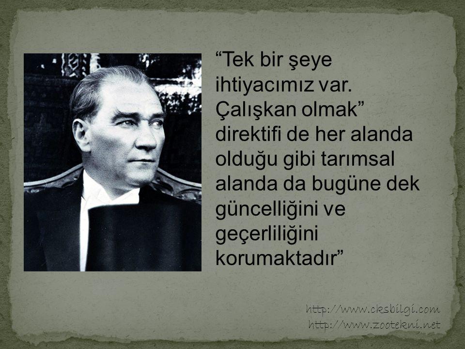 Türkiye, 1970'lere kadar kendi kendini besleyebilen 7 ülkeden biri idi.
