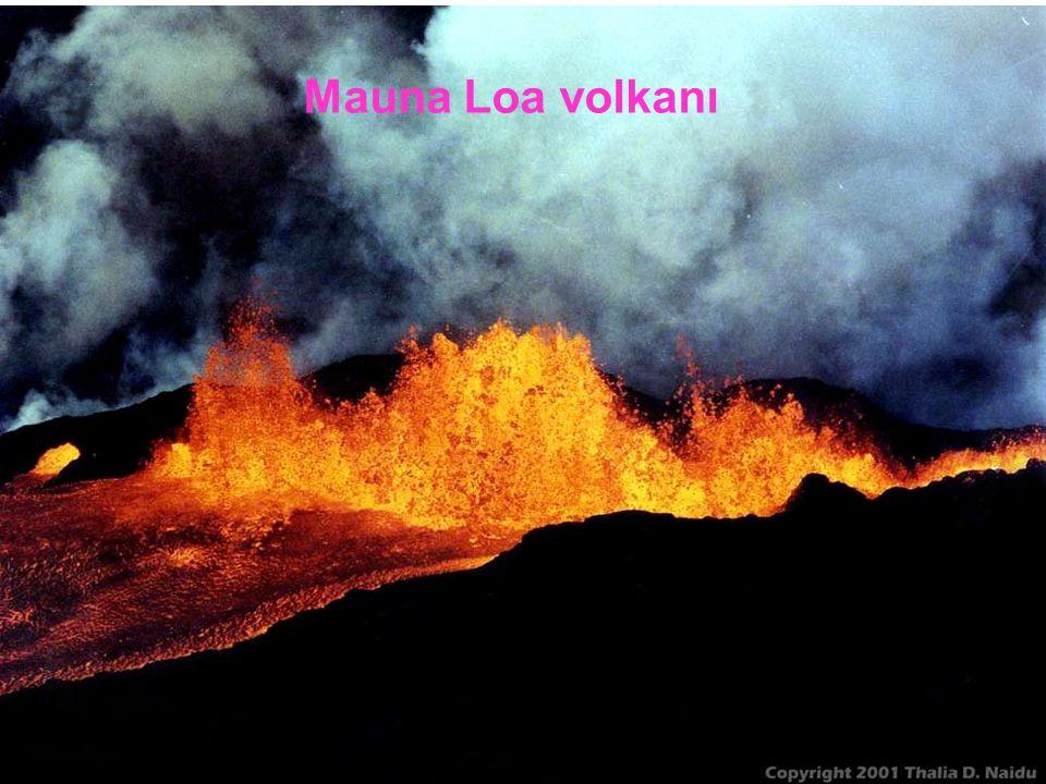 Mauna Loa volkanı