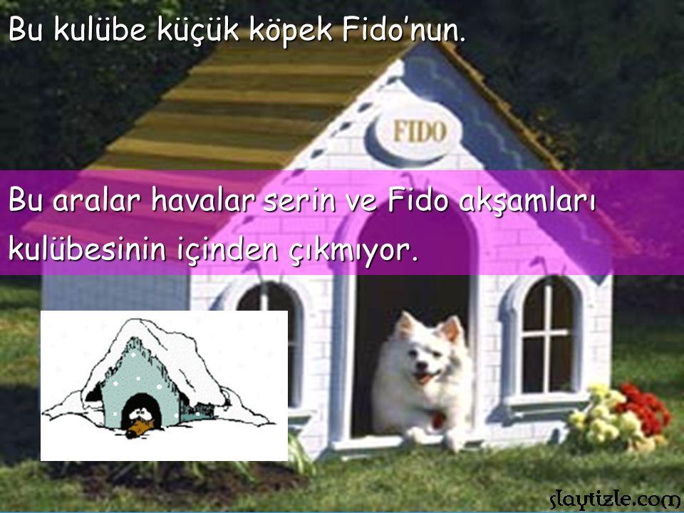 Bu kulübe küçük köpek Fido'nun.