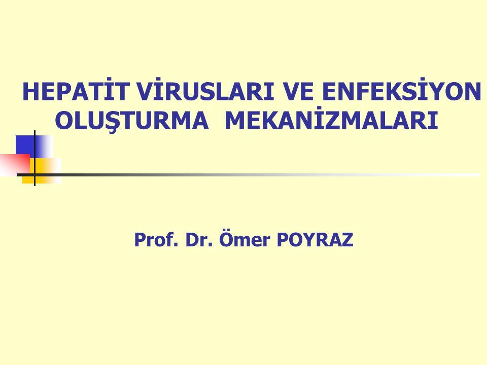 HEPATİT VİRUSLARI VE ENFEKSİYON OLUŞTURMA MEKANİZMALARI Prof. Dr. Ömer POYRAZ