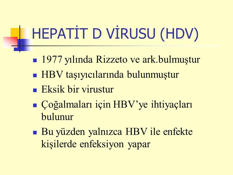 HEPATİT D VİRUSU (HDV) 1977 yılında Rizzeto ve ark.bulmuştur HBV taşıyıcılarında bulunmuştur Eksik bir virustur Çoğalmaları için HBV'ye ihtiyaçları bulunur Bu yüzden yalnızca HBV ile enfekte kişilerde enfeksiyon yapar