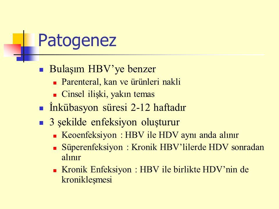 Patogenez Bulaşım HBV'ye benzer Parenteral, kan ve ürünleri nakli Cinsel ilişki, yakın temas İnkübasyon süresi 2-12 haftadır 3 şekilde enfeksiyon oluş