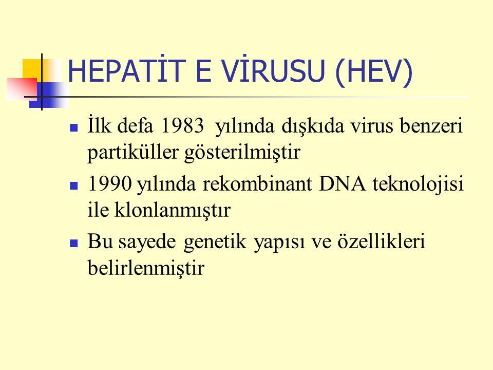 HEPATİT E VİRUSU (HEV) İlk defa 1983 yılında dışkıda virus benzeri partiküller gösterilmiştir 1990 yılında rekombinant DNA teknolojisi ile klonlanmıştır Bu sayede genetik yapısı ve özellikleri belirlenmiştir