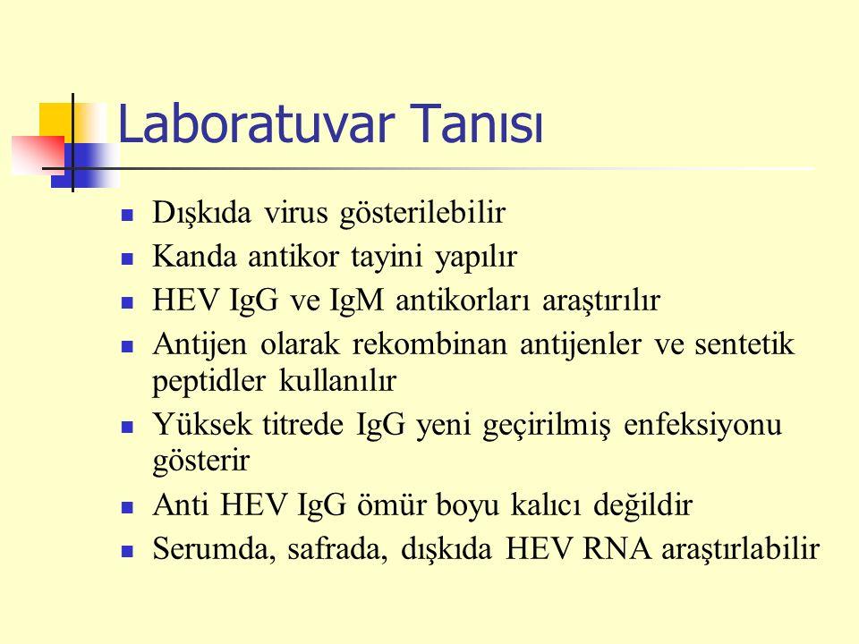 Laboratuvar Tanısı Dışkıda virus gösterilebilir Kanda antikor tayini yapılır HEV IgG ve IgM antikorları araştırılır Antijen olarak rekombinan antijenler ve sentetik peptidler kullanılır Yüksek titrede IgG yeni geçirilmiş enfeksiyonu gösterir Anti HEV IgG ömür boyu kalıcı değildir Serumda, safrada, dışkıda HEV RNA araştırlabilir