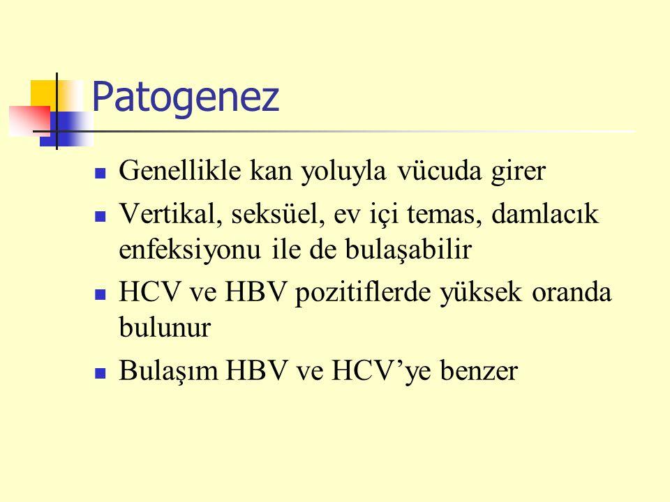Patogenez Genellikle kan yoluyla vücuda girer Vertikal, seksüel, ev içi temas, damlacık enfeksiyonu ile de bulaşabilir HCV ve HBV pozitiflerde yüksek