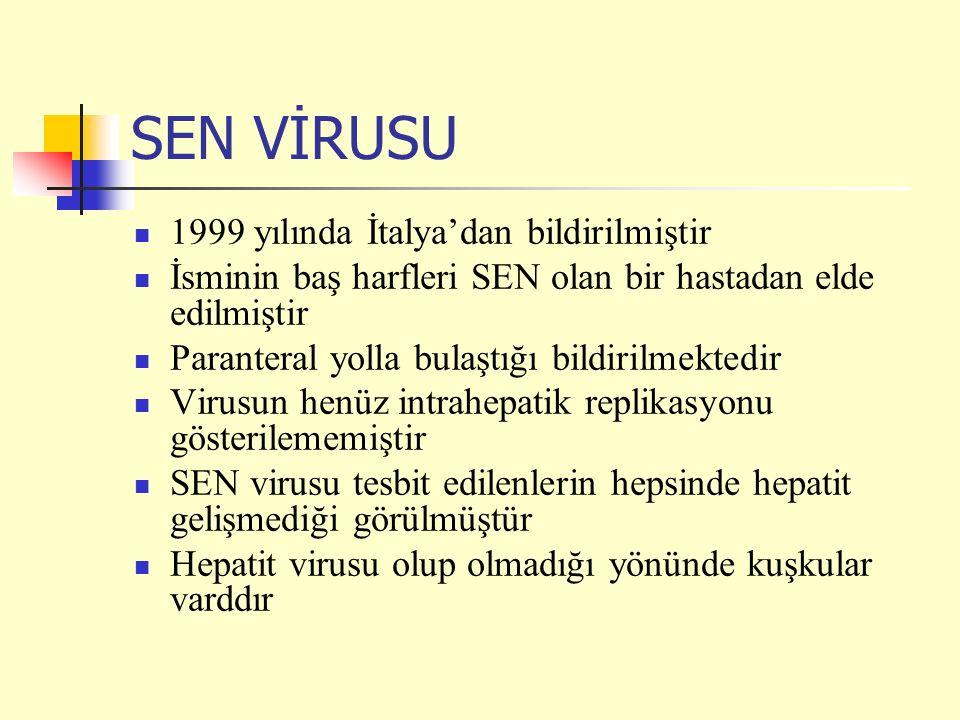 SEN VİRUSU 1999 yılında İtalya'dan bildirilmiştir İsminin baş harfleri SEN olan bir hastadan elde edilmiştir Paranteral yolla bulaştığı bildirilmektedir Virusun henüz intrahepatik replikasyonu gösterilememiştir SEN virusu tesbit edilenlerin hepsinde hepatit gelişmediği görülmüştür Hepatit virusu olup olmadığı yönünde kuşkular varddır