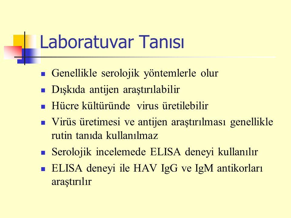 Laboratuvar Tanısı Genellikle serolojik yöntemlerle olur Dışkıda antijen araştırılabilir Hücre kültüründe virus üretilebilir Virüs üretimesi ve antijen araştırılması genellikle rutin tanıda kullanılmaz Serolojik incelemede ELISA deneyi kullanılır ELISA deneyi ile HAV IgG ve IgM antikorları araştırılır