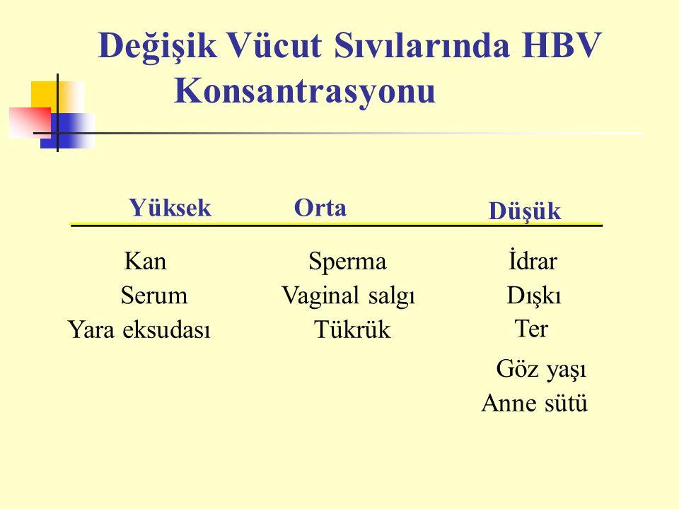 YüksekOrta Düşük KanSpermaİdrar SerumVaginal salgıDışkı Yara eksudasıTükrük Ter Göz yaşı Anne sütü Değişik Vücut Sıvılarında HBV Konsantrasyonu