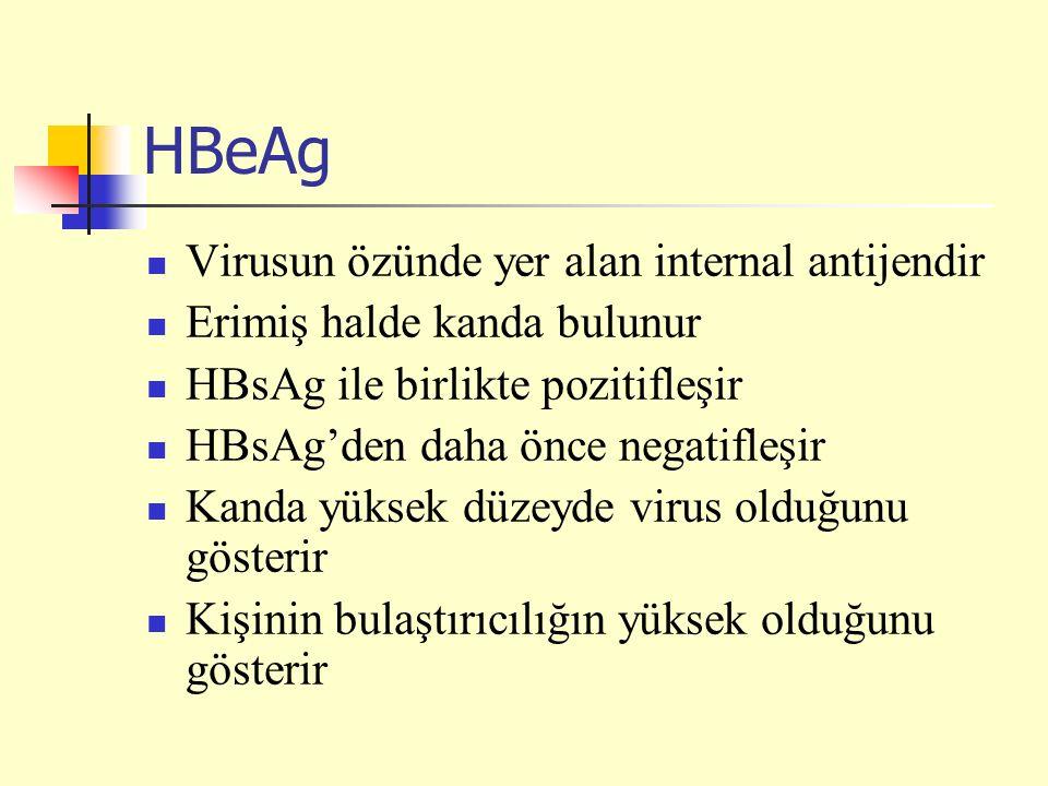 HBeAg Virusun özünde yer alan internal antijendir Erimiş halde kanda bulunur HBsAg ile birlikte pozitifleşir HBsAg'den daha önce negatifleşir Kanda yüksek düzeyde virus olduğunu gösterir Kişinin bulaştırıcılığın yüksek olduğunu gösterir