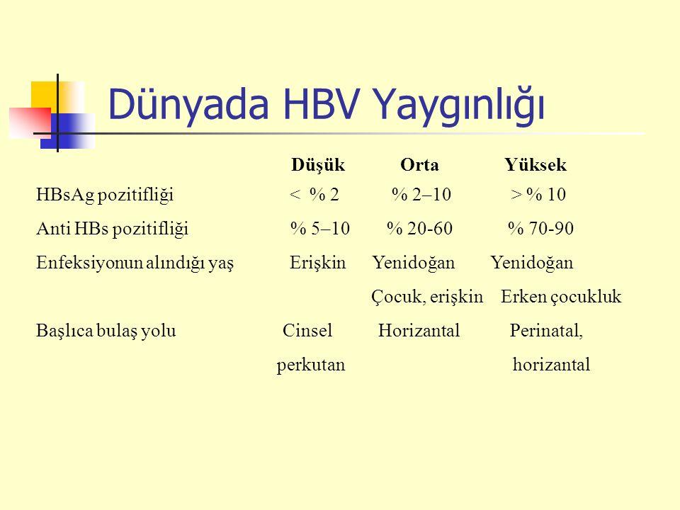Düşük Orta Yüksek HBsAg pozitifliği % 10 Anti HBs pozitifliği % 5–10 % 20-60 % 70-90 Enfeksiyonun alındığı yaş Erişkin Yenidoğan Yenidoğan Çocuk, erişkin Erken çocukluk Başlıca bulaş yolu Cinsel Horizantal Perinatal, perkutan horizantal Dünyada HBV Yaygınlığı