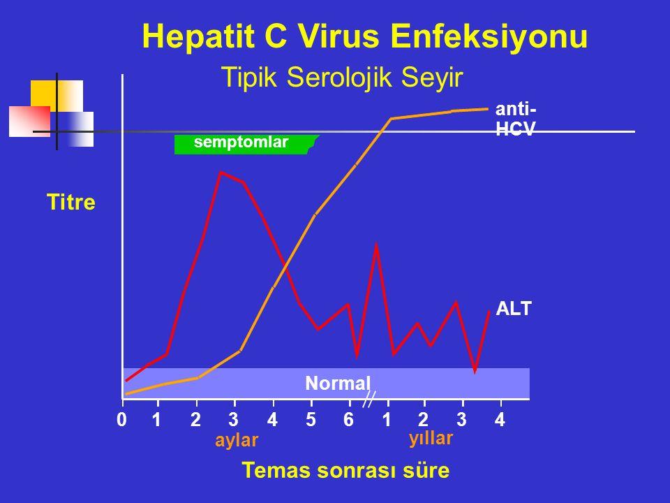 semptomlar anti- HCV ALT Normal 012345 61234 Hepatit C Virus Enfeksiyonu Tipik Serolojik Seyir Titre aylar yıllar Temas sonrası süre
