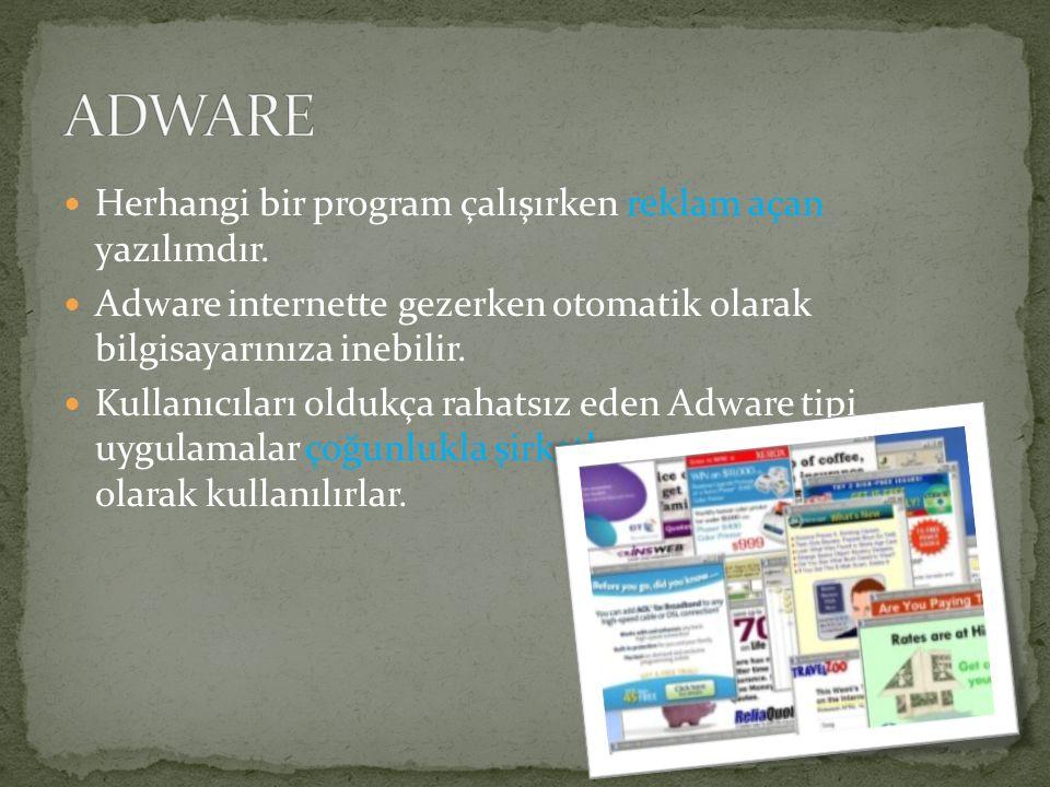 Herhangi bir program çalışırken reklam açan yazılımdır. Adware internette gezerken otomatik olarak bilgisayarınıza inebilir. Kullanıcıları oldukça rah
