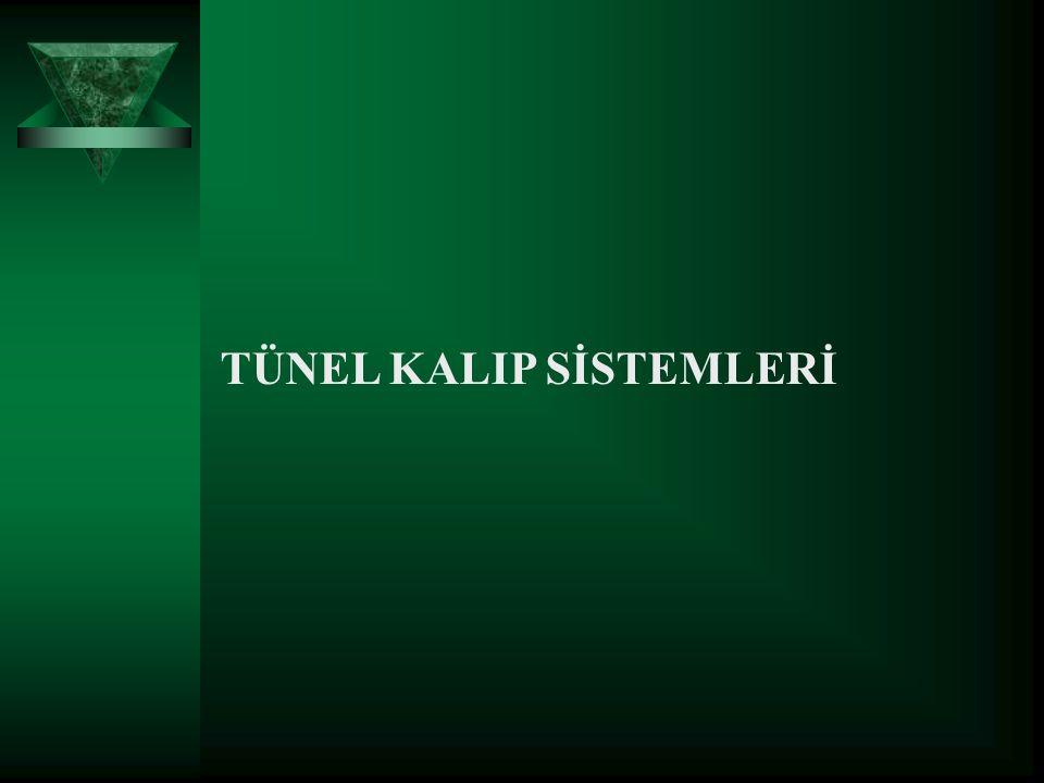  TANIM Tünel kalıp sistemi, yapının duvar ve döşemelerinin, hassas boyutlu ve düzgün yüzeyli çelik kalıplar yardımıyla, tek bir operasyonla dökülebildiği yapı tekniği olarak tanımlanabilir.