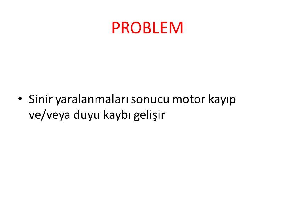 PROBLEM Sinir yaralanmaları sonucu motor kayıp ve/veya duyu kaybı gelişir