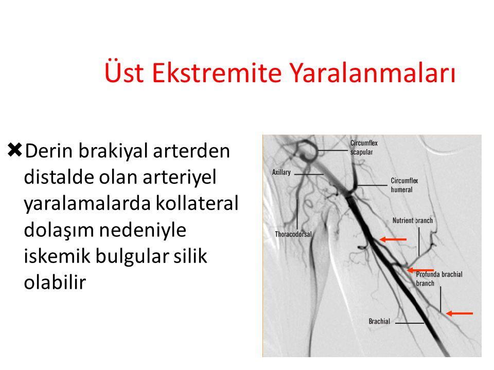 Üst Ekstremite Yaralanmaları  Derin brakiyal arterden distalde olan arteriyel yaralamalarda kollateral dolaşım nedeniyle iskemik bulgular silik olabi