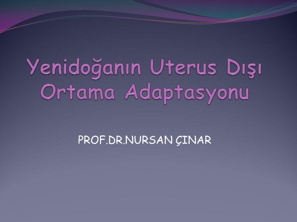 PROF.DR.NURSAN ÇINAR